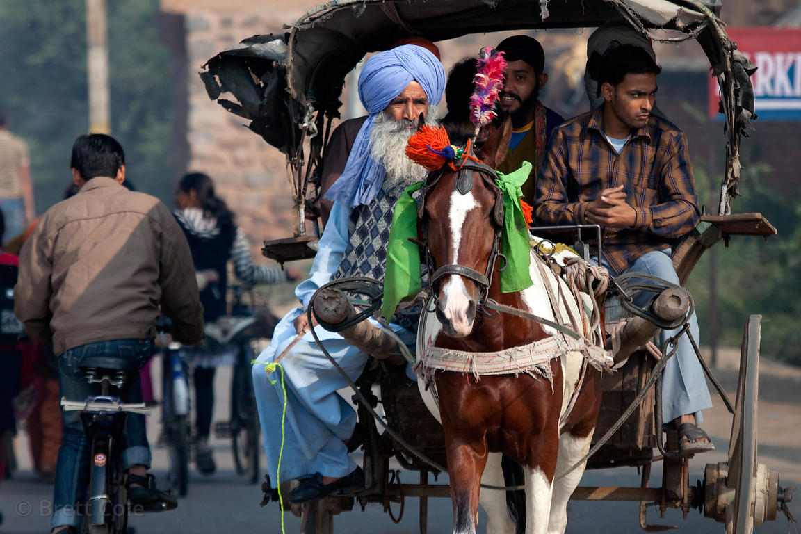 Horse-drawn carriage in Bharatpur, Rajasthan, India