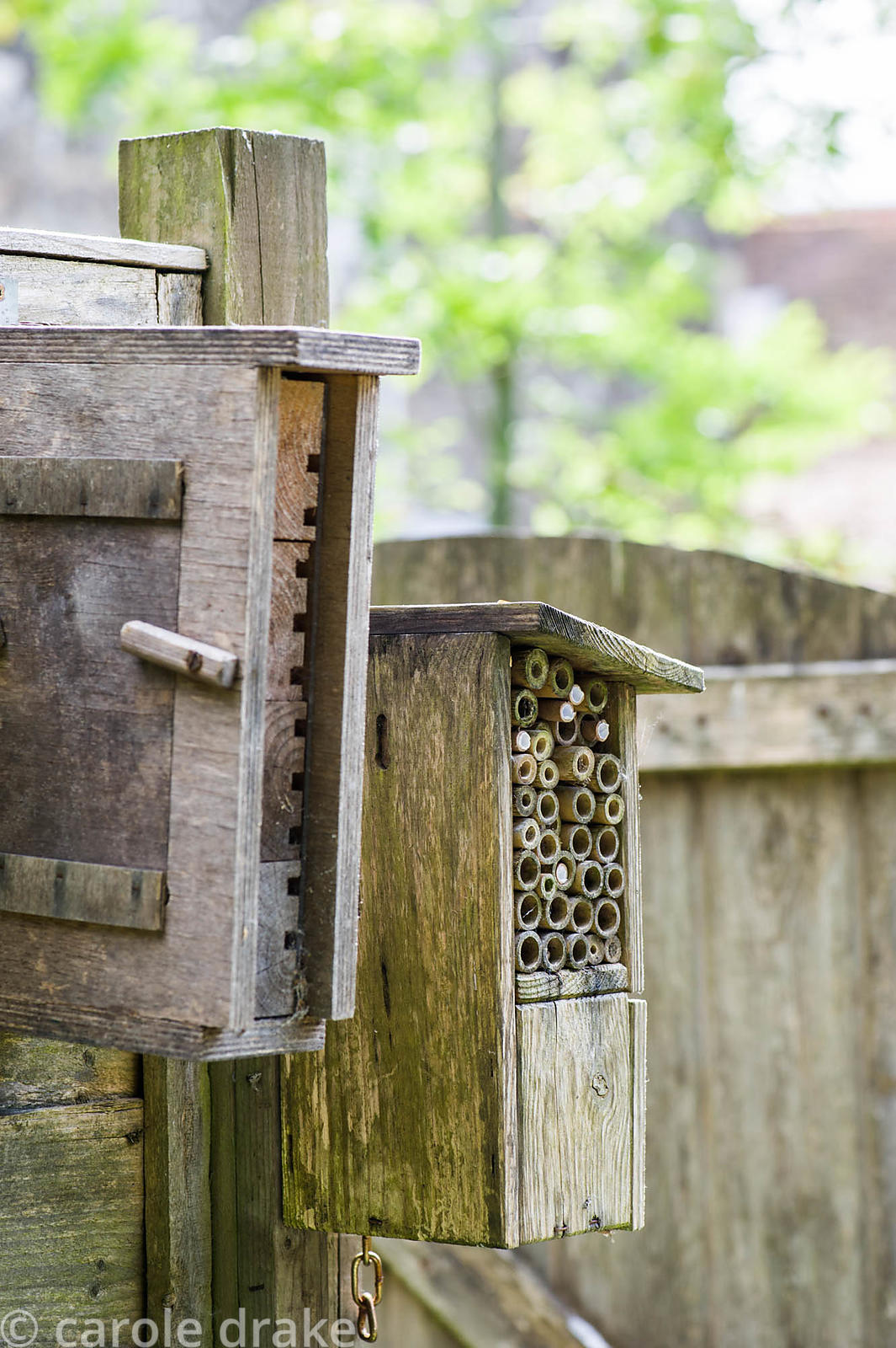 Home made bug-houses for solitary bees and other insects.