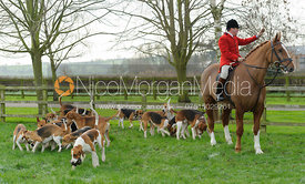 The Belvoir Hunt Huntsman John Holliday