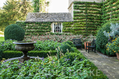 The Fountain Garden contained by walls covered by carefully trained pyracantha and box edged beds containing variegated fuchs...