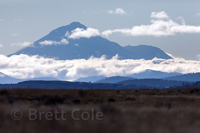 Clouds over Mount Shasta from the Tule Lake NWR, California