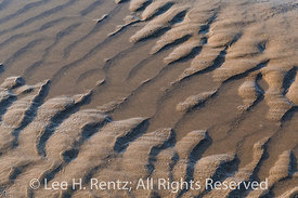 Ripples in Sand on Shi Shi Beach in Olympic National Park
