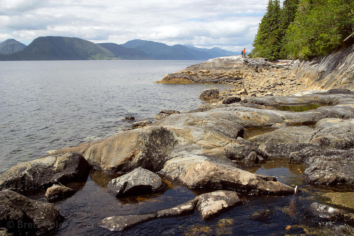 Rocky shores along the Inside Passage, Great Bear Rainforest, British Columbia