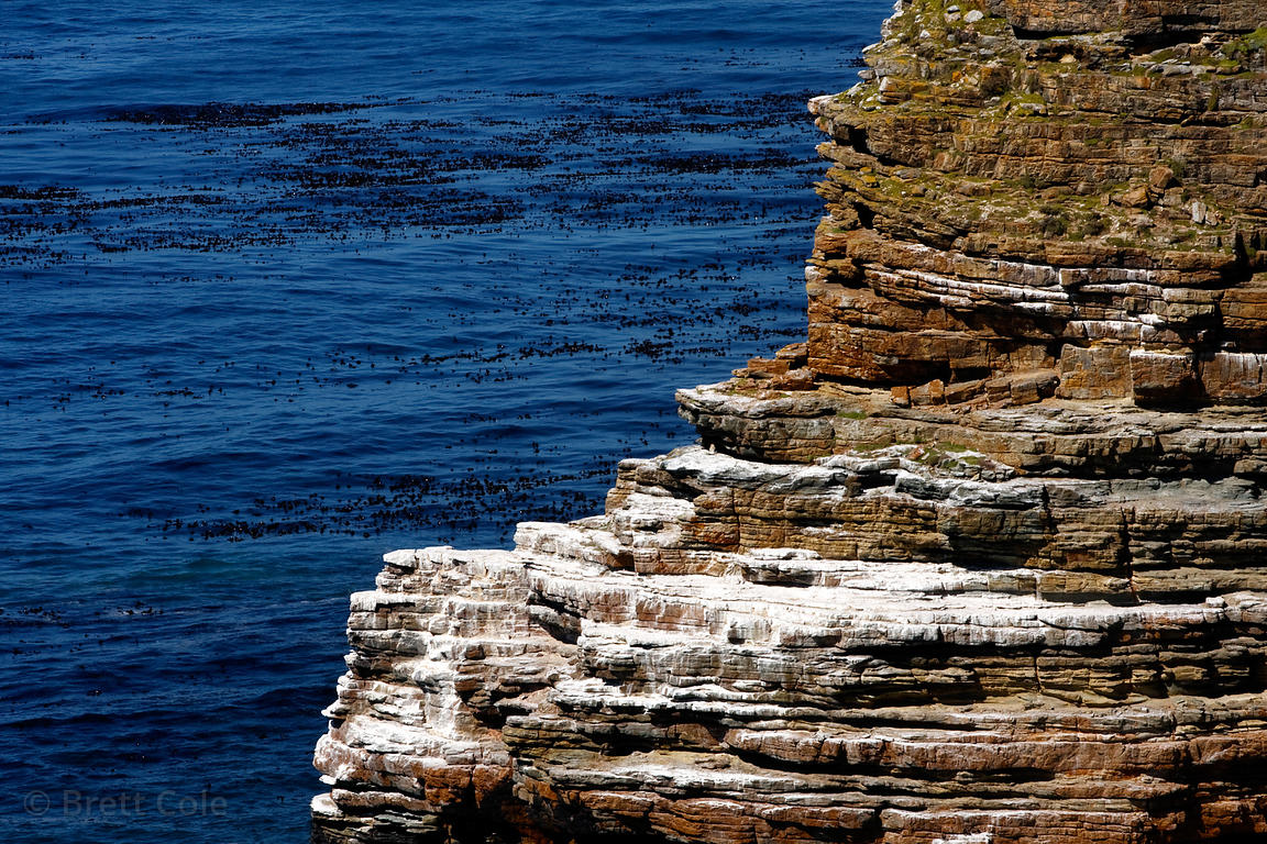 Rock strata at Cape Point, Cape Peninsula, South Africa