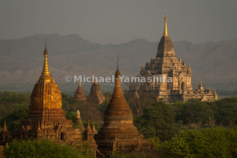 Temple spires bathed in golden light near Shwesandaw Pagoda in Bagan, the birthplace of Myanmar culture. Built over several c...