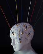 EEG brain research