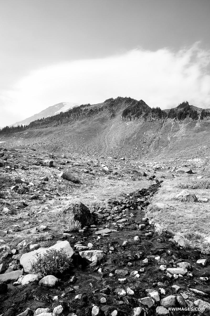 ALPINE CREEK MOUNT RAINIER NATIONAL PARK WASHINGTON BLACK AND WHITE VERTICAL