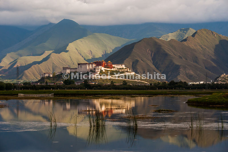 A reflection of the Potala Palace, which towers 100 meters (300 feet) above Lhasa, floats among the mountains and the marsh t...