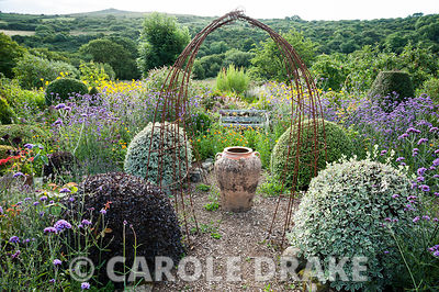 A large oil jar marks the centre of the Rickyard, framed by rusty metal 'arches' and pots of Aeonium 'Zwartkop' with scarlet ...