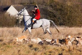Cotswold Hunt, Boxing Day 2016, 20161226039