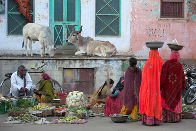Women in saris at a vegetable market in Pushkar, Rajasthan, India
