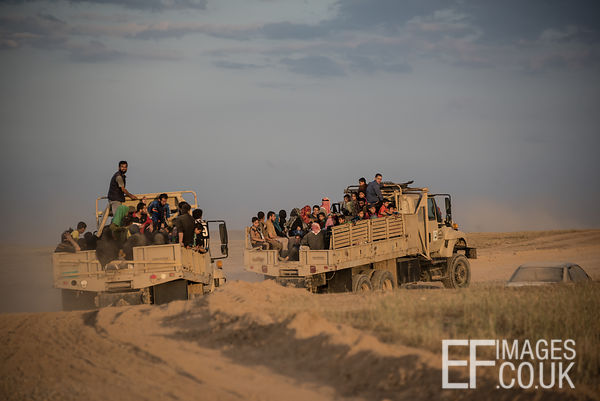 People displaced by the conflict in Mosul being transported to an IDP Camp outside the city