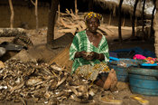 Woman in the fish market, Kafountine, Casamance, Senegal