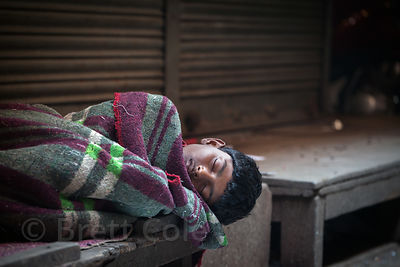A boy sleeps on a bench early morning in the slaughterhouse, Newmarket, Kolkata, India. He likely works slaughtering chickens.