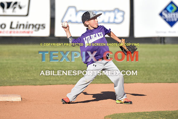05-06-16_BB_LL_DIX_Farm_Wildcats_v_Gators_BR_555