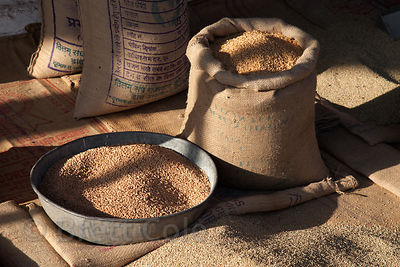 Grains for sale at a market in Jodhpur, Rajasthan, India