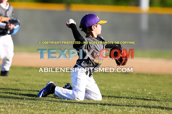 04-08-17_BB_LL_Wylie_Rookie_Wildcats_v_Tigers_TS-306