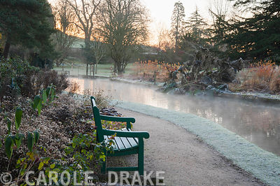 Sunrise on a November morning beside the Well Pool at the Bishop's Palace garden in Wells