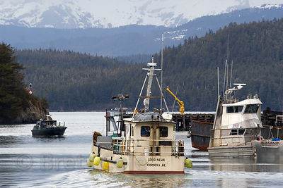 Fishing boats in the harbor, Cordova, Alaska
