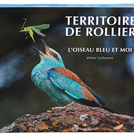 Release of my new book about the European Roller photos