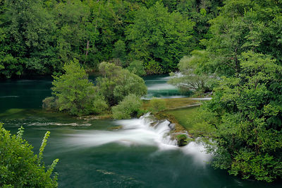 Overview of waterfalls on the Mreznica river, overhung by deciduous trees, Zvecaj, Karlovacka, Croatia, July 2010.