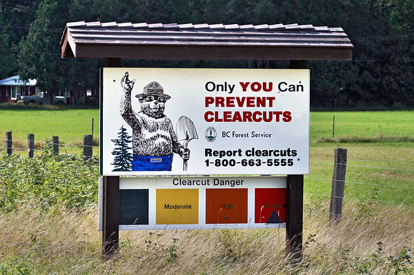 "Parody of a BC Forest Service sign featuring Smokey the Bear reads ""Only You Can Prevent Clearcuts"". Created using Adobe Phot..."