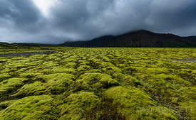 Moss and Clouds | Southeast Coast, Iceland