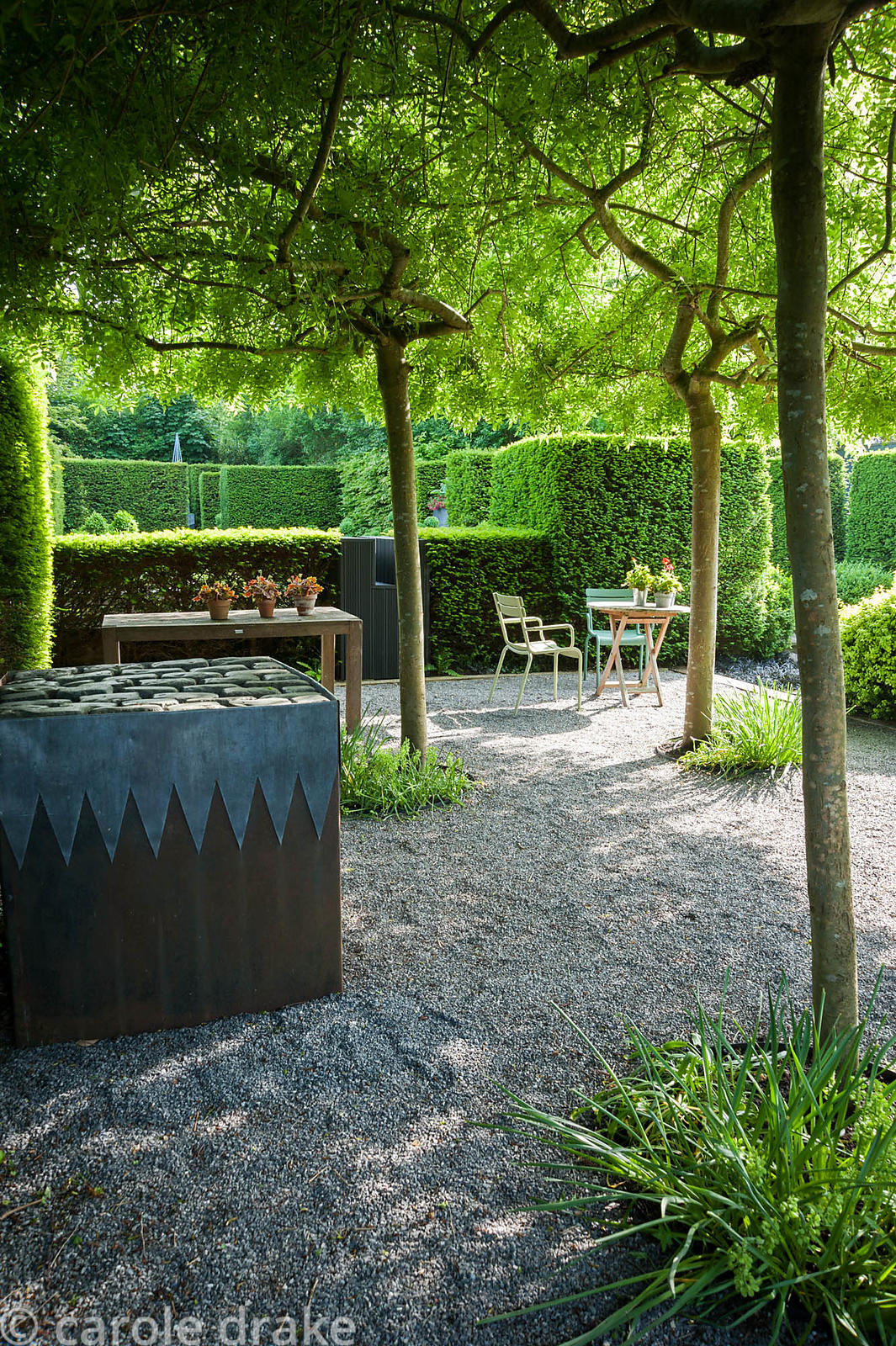Gravelled courtyard area beside the studio with four weeping ash, Fraxinus excelsior 'Pendula' forming a shady canopy, steel ...