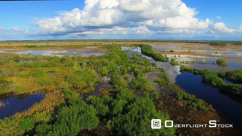 Everglades Florida -- Available in HD and 4k -- 3840 x 2160 - 449.5 MB - QuickTime Movie - AVC Coding - 12 MB/sec - 29.97fps --