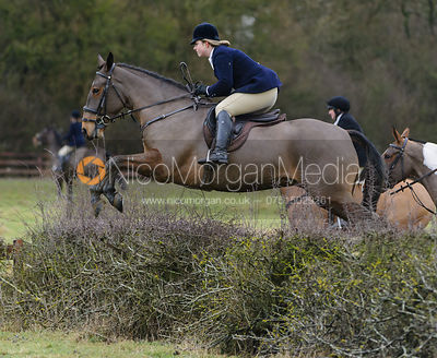 The Cottesmore Hunt at Town Park Farm 6/1