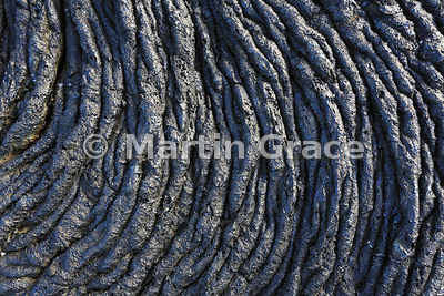 Close-up of Pahoehoe Lava (Rope Lava), Santiago Island, Galapagos
