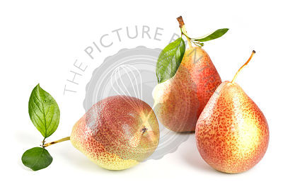 Pears with leaves on white background