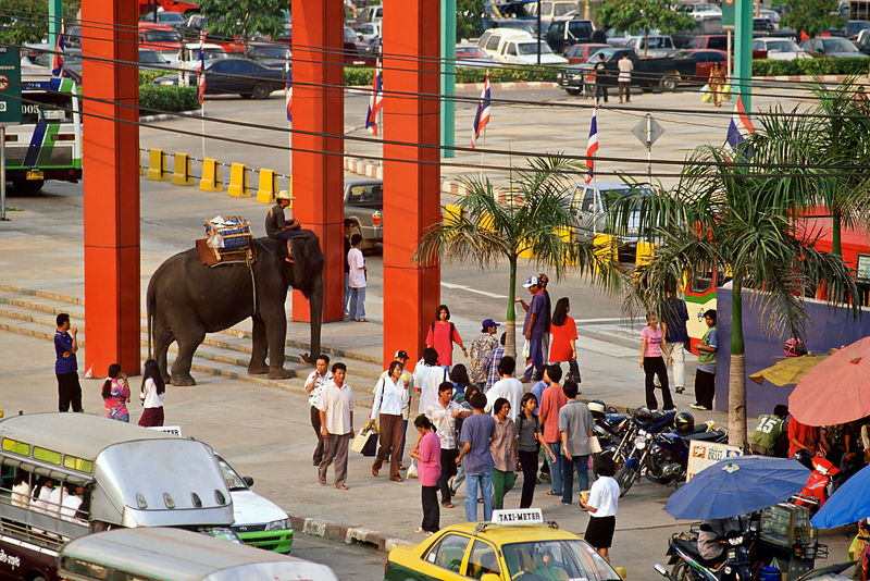 Beggar elephant outside Future Park Shopping mall, Rangsit, Bangkok, Thailand