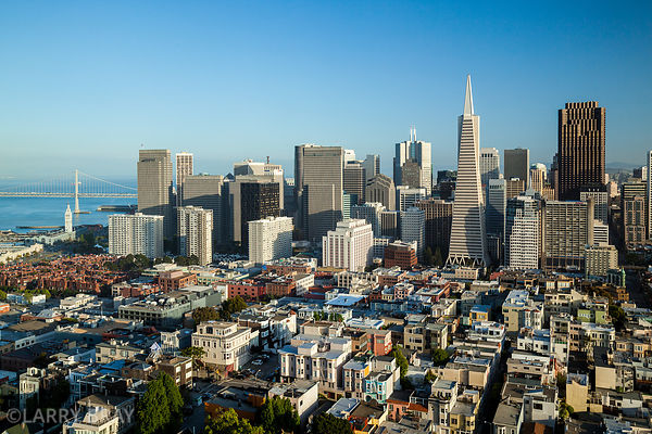 View across San Francisco  financial district including the Transamerica Pyramid building , California, USA