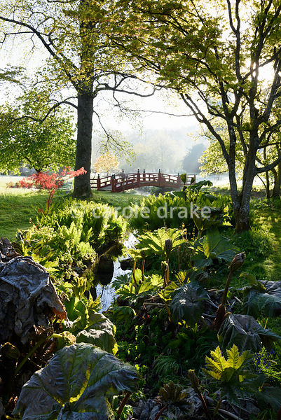 A red Nikko bridge spans a tributary of the River Avon in the Japanese garden at Heale House, Middle Woodford, Wiltshire with...
