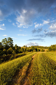 Idyllic grassy trail in beautiful Green Farm Park, Maryland