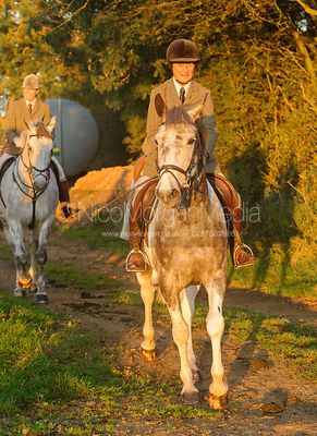 The Cottesmore Hunt at Pickwell, 8-Sept-13.