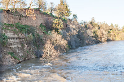 Looking towards the Fair Oaks bluffs (cliffs) from the Fair Oaks red footbridge with American River in flood