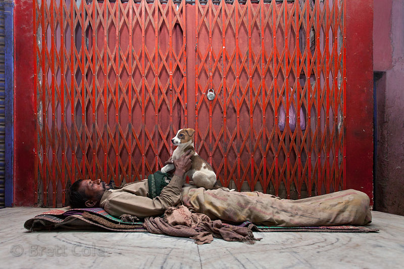 A homeless man sleeps with the company of a family of stray dogs (a mother and three puppies total), Allahabad, India.