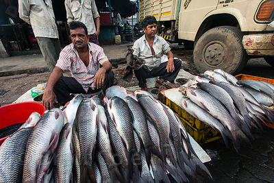 Fish-sellers in the Dharavi slum, Mumbai, India.