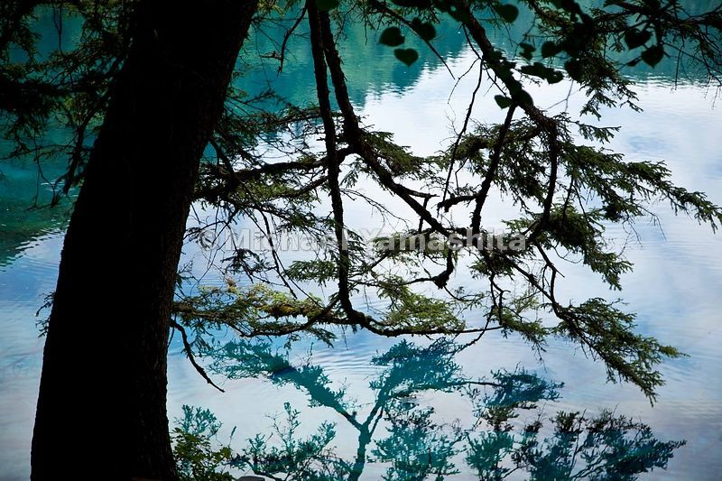 Jiuzhaigou in Spring.  Five-Colored Lake. The most colorful of all the lakes.