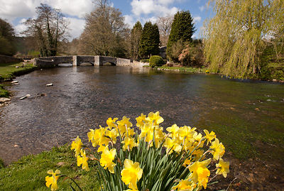 Spring at Sheepwash Bridge, Ashford-in-the-Water
