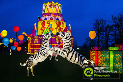 Longleat_Festival_of_Light-22