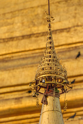 Shwedagon Umbrella