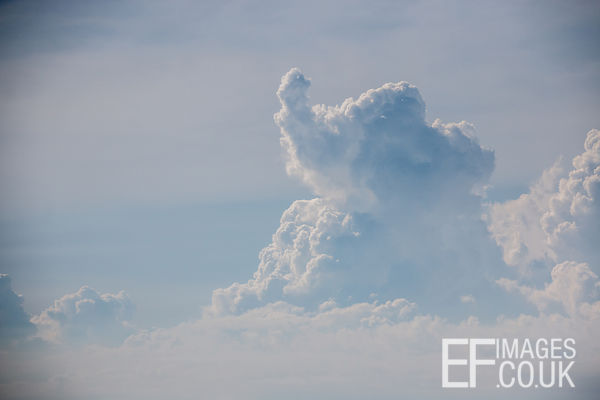 Baby Elephant Shaped Cloud!