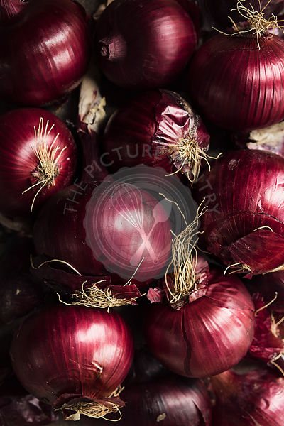 Fresh red onions top view