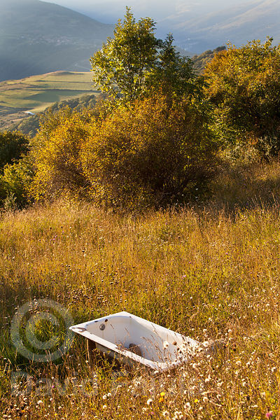 drinking trough (cows) in the bush