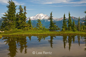 Glacier Peak viewed from a tarn in Mt. Forgotten Meadows, Mt. Baker-Snoqualmie National Forest, Cascade Mountains, Washington...