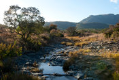 River, Ithala Game Reserve, South Africa