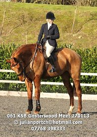 061_KSB_Gosterwood_Meet_270113